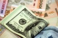 Как повлияет на курсы валют с 1 июня новая валютная политика?
