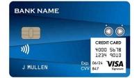 Visa и компания Dynamics представили первую в мире карту Wallet Card
